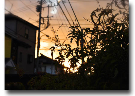 10日ブログ1.jpg